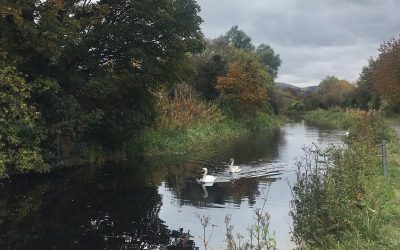 Improving the rowing stretch of the Union Canal